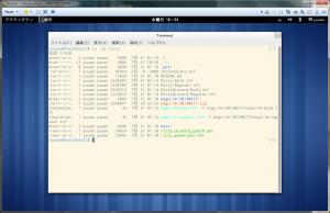 Fedora19 on VMware